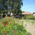 Jardin relaxant, et terrain de pétanque à disposition